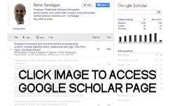 Click to access Google Scholar page